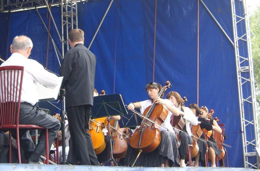 Оркестр на траве