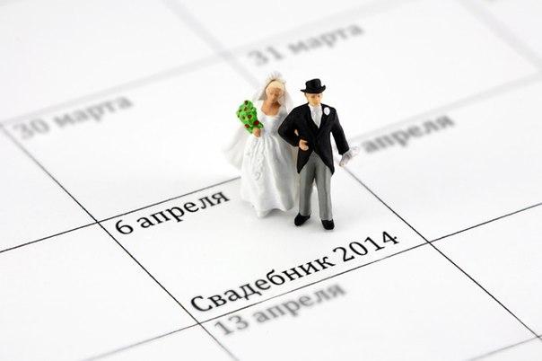 svadebnik-main